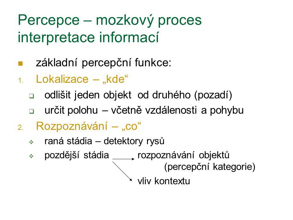 """Percepce – mozkový proces interpretace informací základní percepční funkce: 1. Lokalizace – """"kde""""  odlišit jeden objekt od druhého (pozadí)  určit p"""