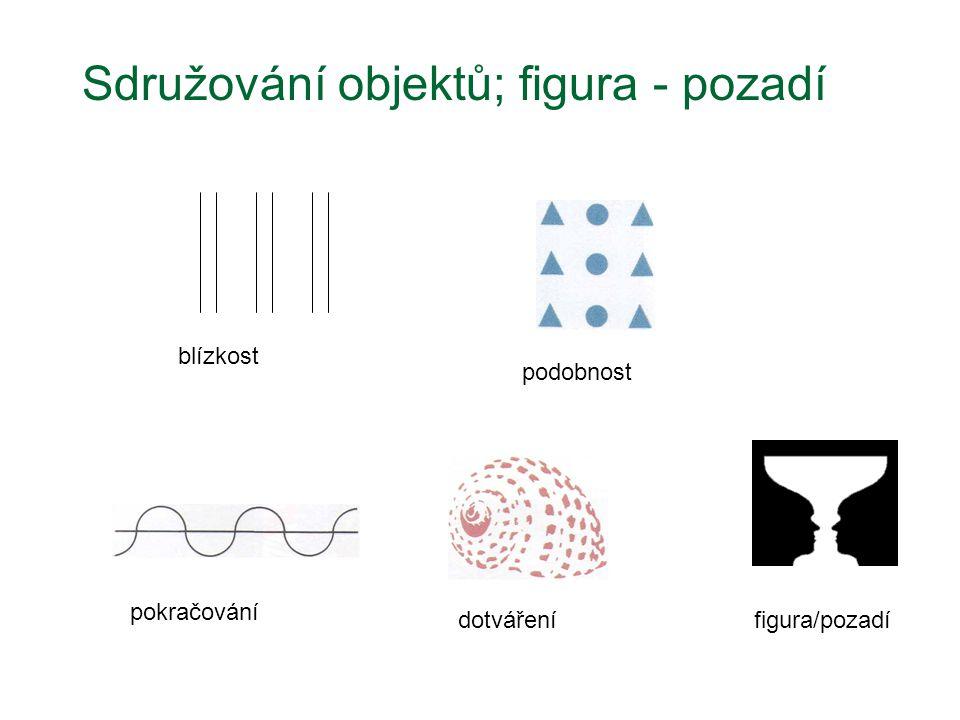 blízkost podobnost pokračování dotvářenífigura/pozadí Sdružování objektů; figura - pozadí