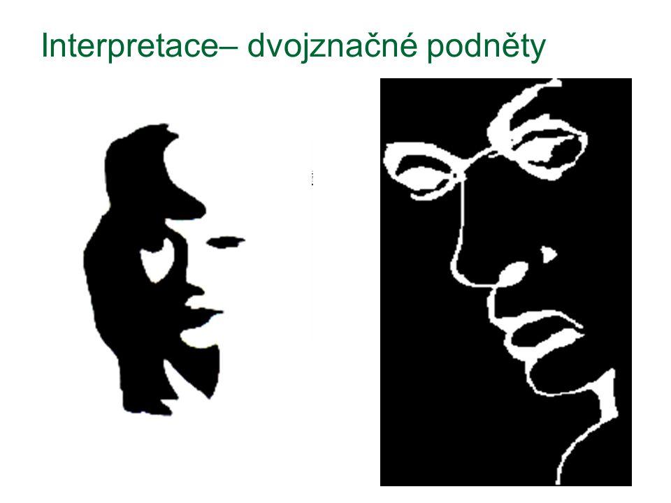 Interpretace– dvojznačné podněty