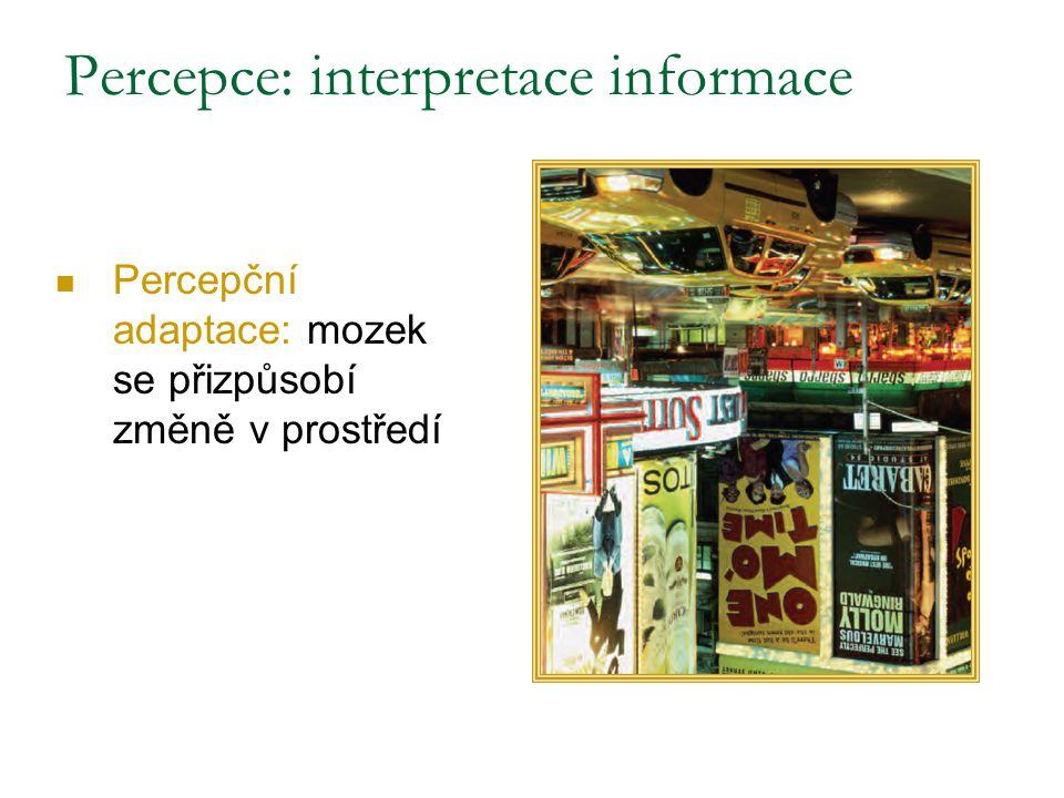 Percepční adaptace: mozek se přizpůsobí změně v prostředí Percepce: interpretace informace