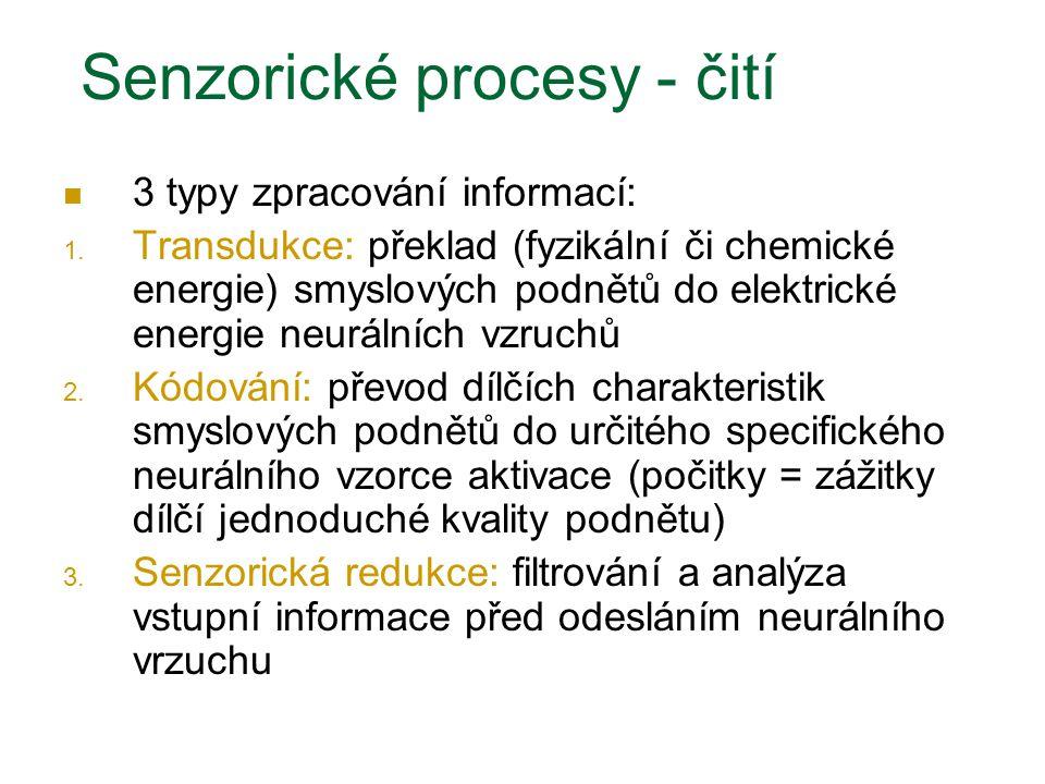 Senzorické procesy - čití 3 typy zpracování informací: 1. Transdukce: překlad (fyzikální či chemické energie) smyslových podnětů do elektrické energie
