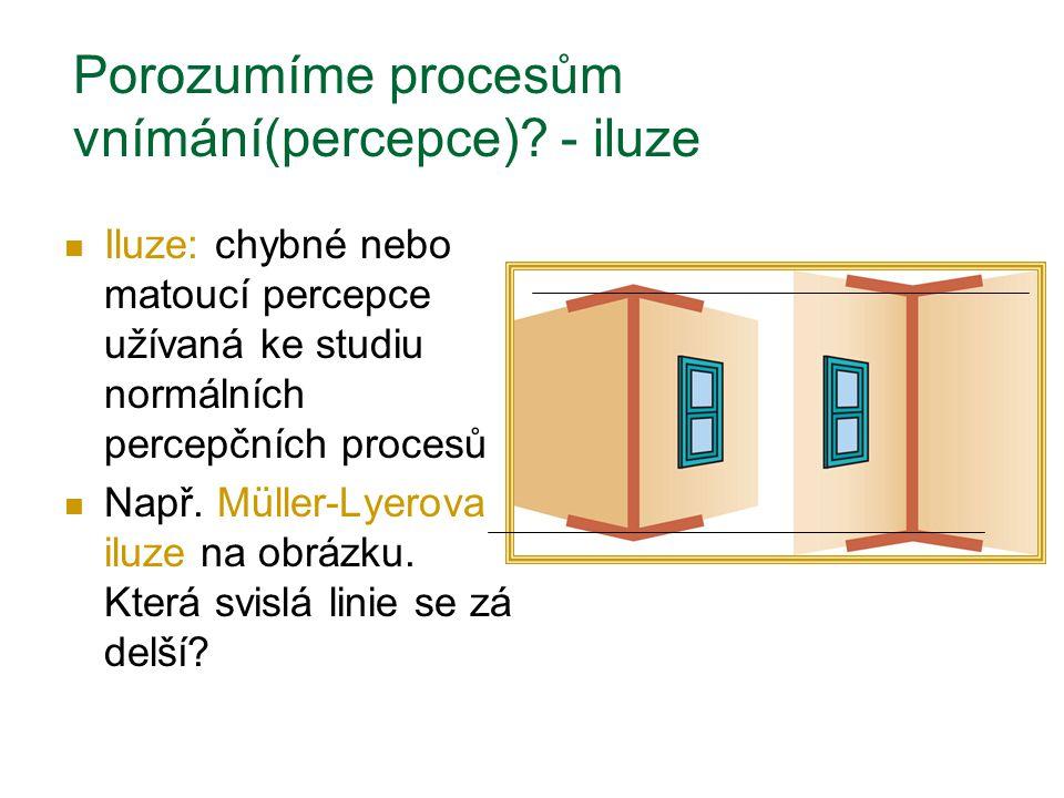 Porozumíme procesům vnímání(percepce)? - iluze Iluze: chybné nebo matoucí percepce užívaná ke studiu normálních percepčních procesů Např. Müller-Lyero