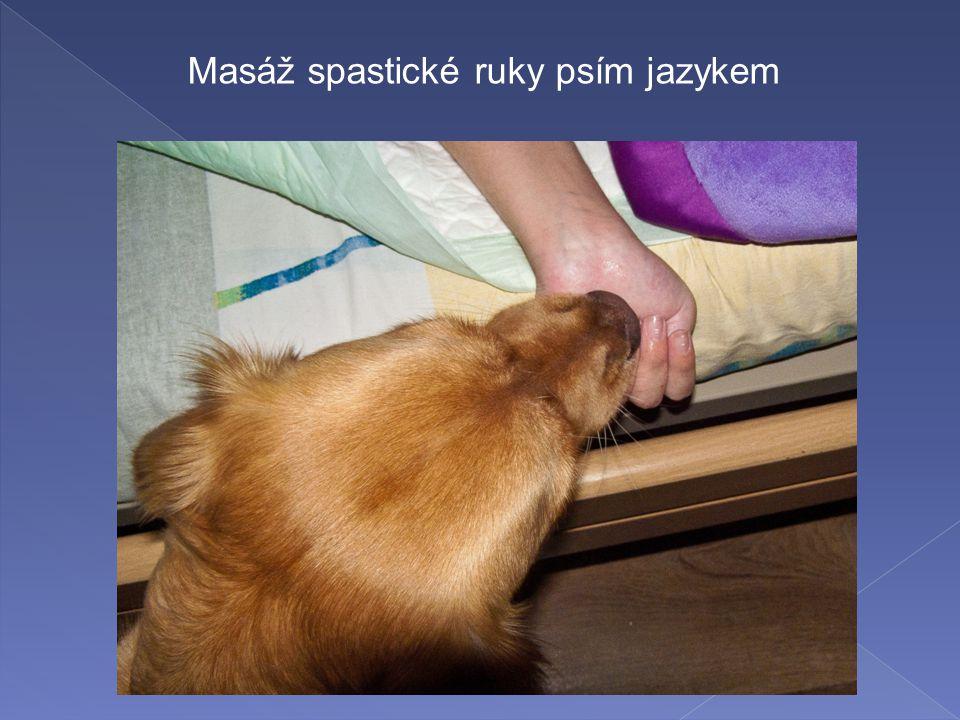 Masáž spastické ruky psím jazykem