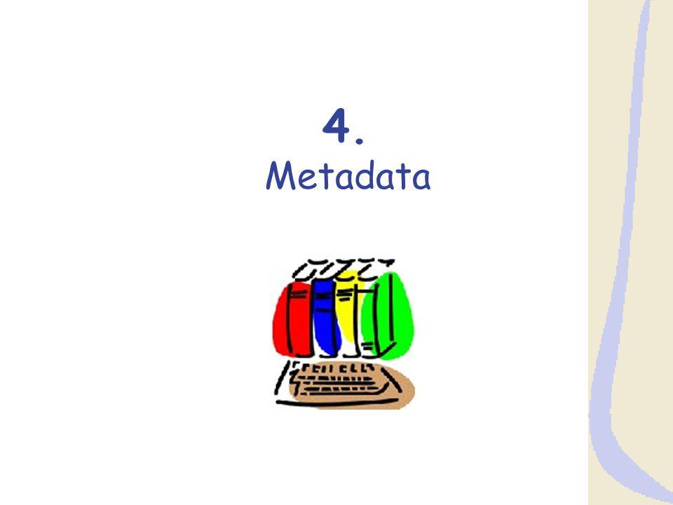4. Metadata