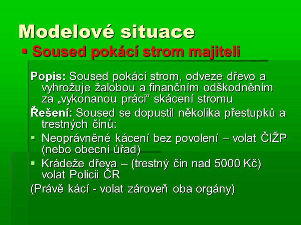  Kácení obecní zeleně - park Popis: Plošné kácení parku v majetku obce, údajným důvodem je obnova parku.