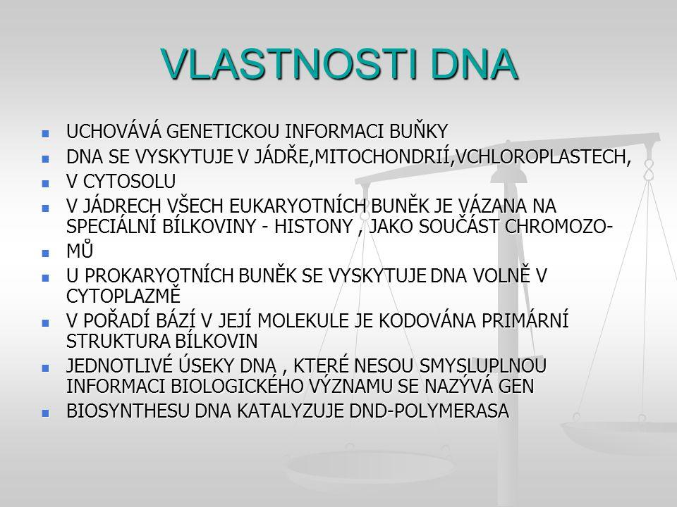VLASTNOSTI DNA UCHOVÁVÁ GENETICKOU INFORMACI BUŇKY UCHOVÁVÁ GENETICKOU INFORMACI BUŇKY DNA SE VYSKYTUJE V JÁDŘE,MITOCHONDRIÍ,VCHLOROPLASTECH, DNA SE V