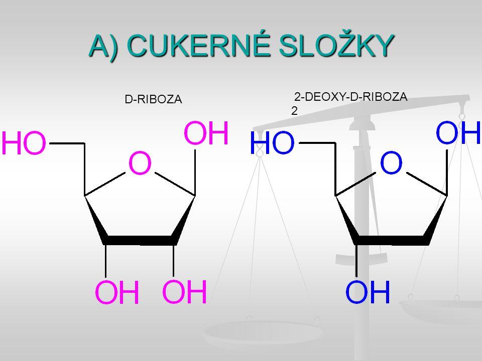 A) CUKERNÉ SLOŽKY D-RIBOZA 2 2-DEOXY-D-RIBOZA