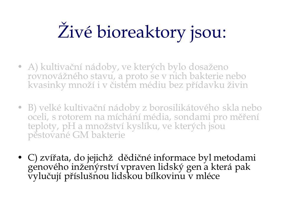 Živé bioreaktory jsou: A) kultivační nádoby, ve kterých bylo dosaženo rovnovážného stavu, a proto se v nich bakterie nebo kvasinky množí i v čistém médiu bez přídavku živin B) velké kultivační nádoby z borosilikátového skla nebo oceli, s rotorem na míchání média, sondami pro měření teploty, pH a množství kyslíku, ve kterých jsou pěstované GM bakterie C) zvířata, do jejichž dědičné informace byl metodami genového inženýrství vpraven lidský gen a která pak vylučují příslušnou lidskou bílkovinu v mléce