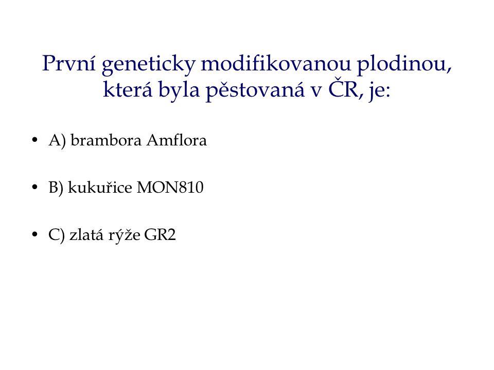 První geneticky modifikovanou plodinou, která byla pěstovaná v ČR, je: A) brambora Amflora B) kukuřice MON810 C) zlatá rýže GR2