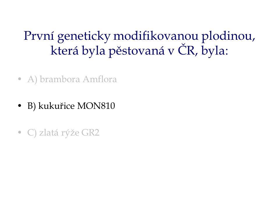 První geneticky modifikovanou plodinou, která byla pěstovaná v ČR, byla: A) brambora Amflora B) kukuřice MON810 C) zlatá rýže GR2