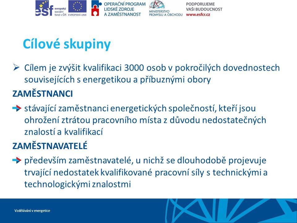 Vzdělávání v energetice Cílové skupiny  Cílem je zvýšit kvalifikaci 3000 osob v pokročilých dovednostech souvisejících s energetikou a příbuznými obo