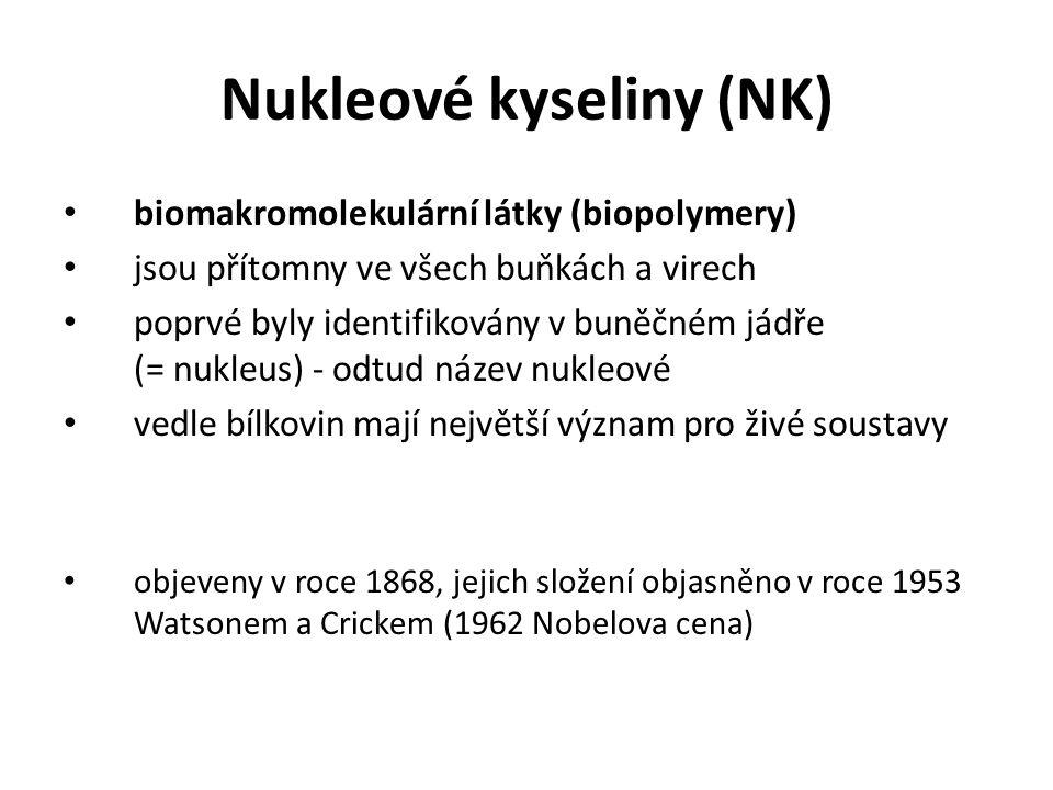 Nukleové kyseliny (NK) biomakromolekulární látky (biopolymery) jsou přítomny ve všech buňkách a virech poprvé byly identifikovány v buněčném jádře (=