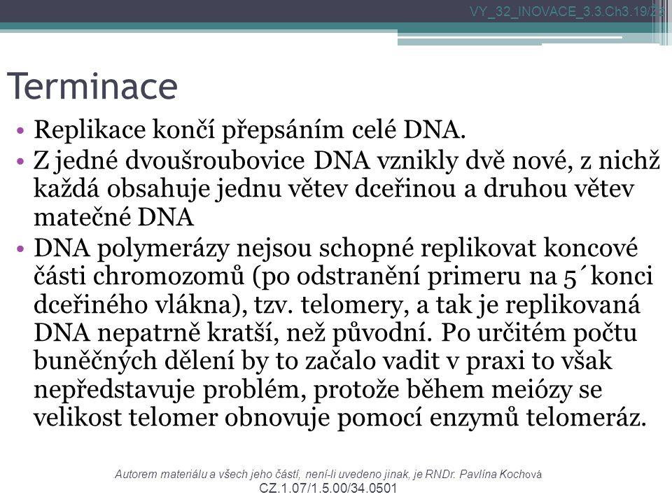 Terminace Replikace končí přepsáním celé DNA.