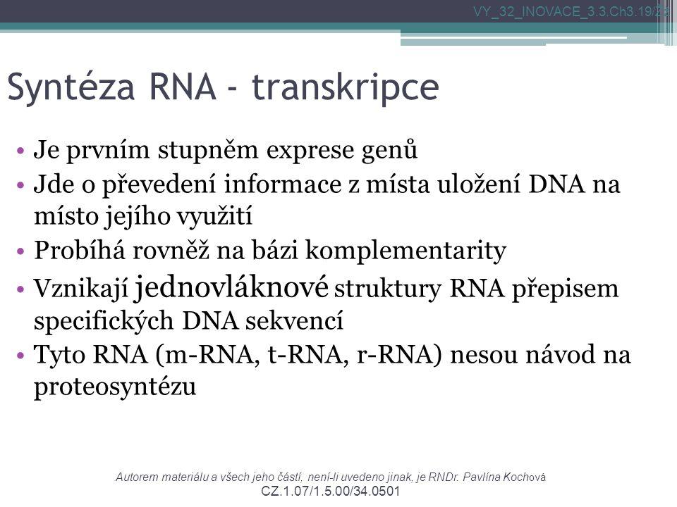 Syntéza RNA - transkripce Je prvním stupněm exprese genů Jde o převedení informace z místa uložení DNA na místo jejího využití Probíhá rovněž na bázi komplementarity Vznikají jednovláknové struktury RNA přepisem specifických DNA sekvencí Tyto RNA (m-RNA, t-RNA, r-RNA) nesou návod na proteosyntézu VY_32_INOVACE_3.3.Ch3.19/Žž Autorem materiálu a všech jeho částí, není-li uvedeno jinak, je RNDr.