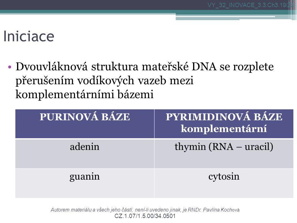 Iniciace Dvouvláknová struktura mateřské DNA se rozplete přerušením vodíkových vazeb mezi komplementárními bázemi VY_32_INOVACE_3.3.Ch3.19/Žž Autorem materiálu a všech jeho částí, není-li uvedeno jinak, je RNDr.