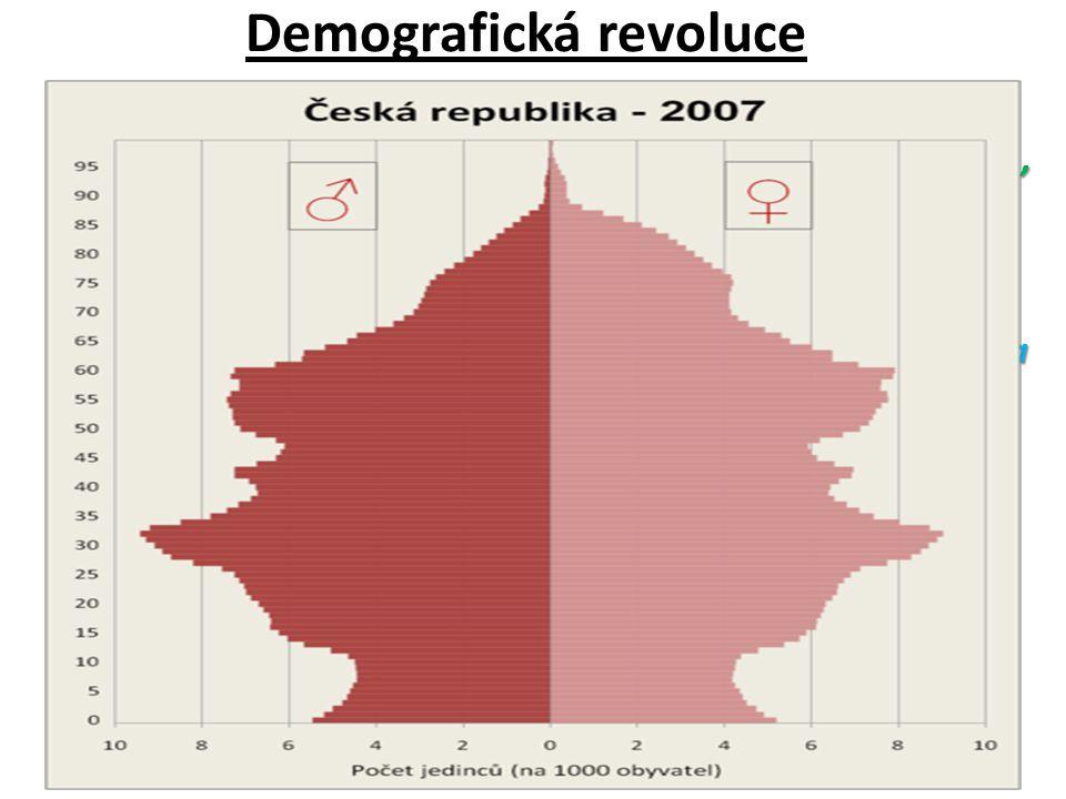 Demografická revoluce Fáze: 1.