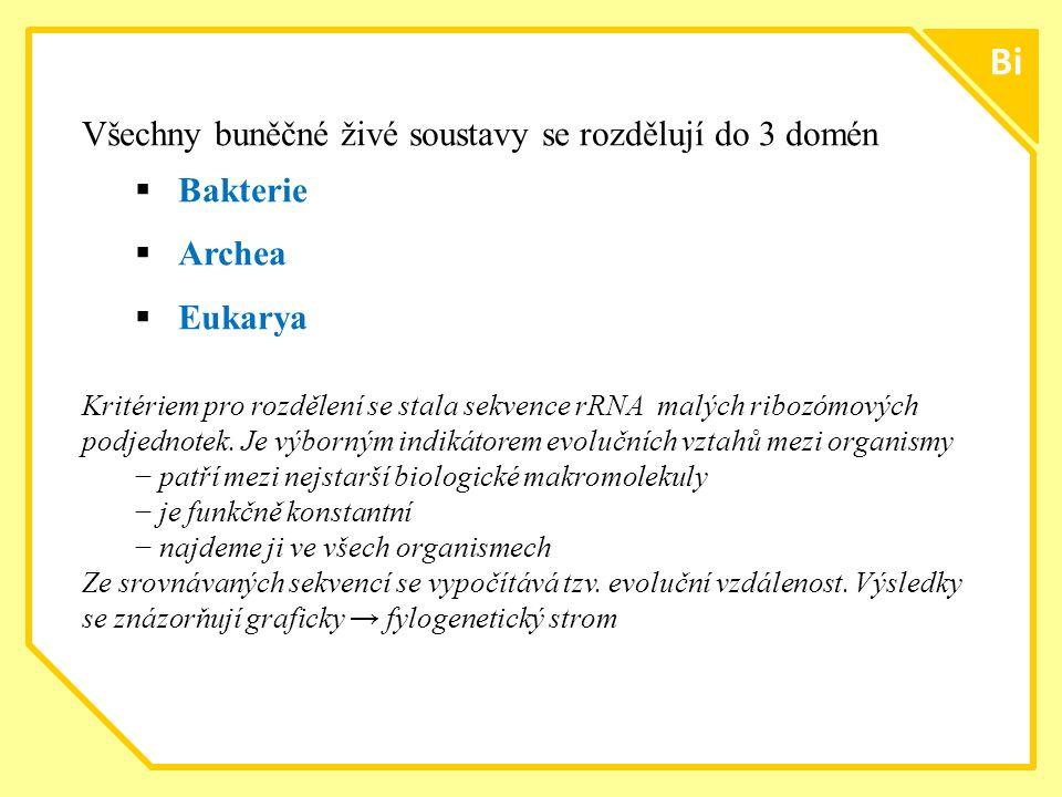 ttt1212 Bi Všechny buněčné živé soustavy se rozdělují do 3 domén  Bakterie  Archea  Eukarya Kritériem pro rozdělení se stala sekvence rRNA malých r