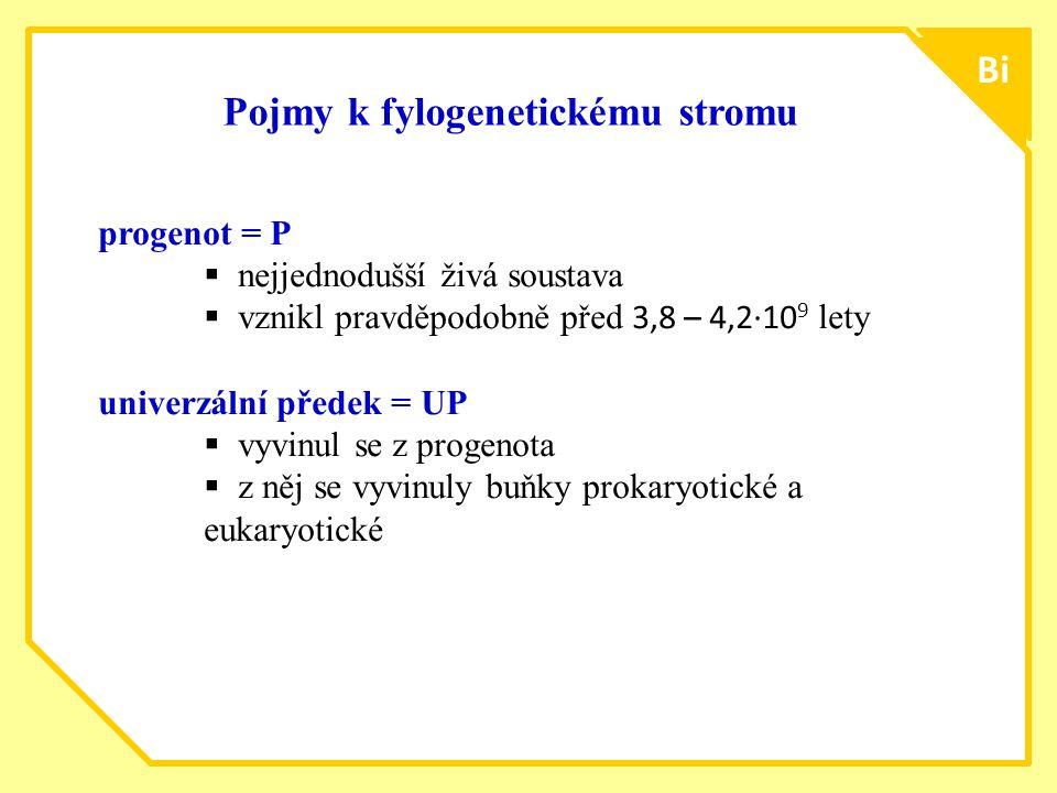 ttt1515 Bi Pojmy k fylogenetickému stromu progenot = P  nejjednodušší živá soustava  vznikl pravděpodobně před 3,8 – 4,2∙10 9 lety univerzální přede