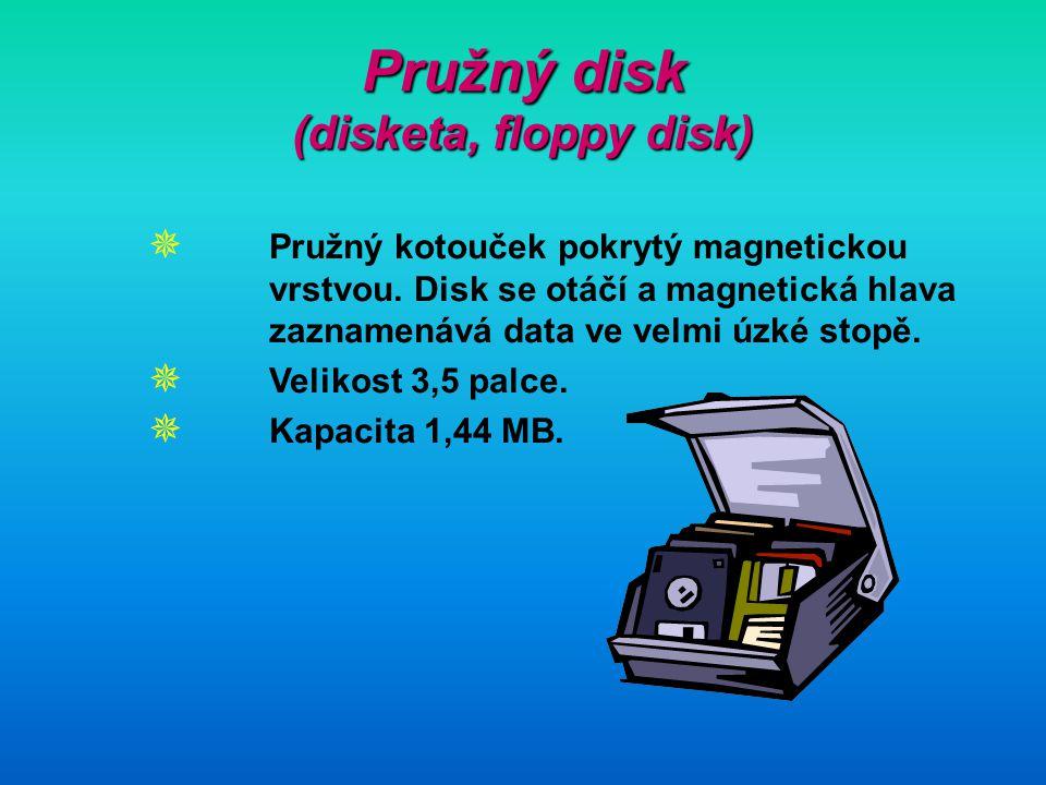 Pružný disk (disketa, floppy disk)  Pružný kotouček pokrytý magnetickou vrstvou. Disk se otáčí a magnetická hlava zaznamenává data ve velmi úzké stop