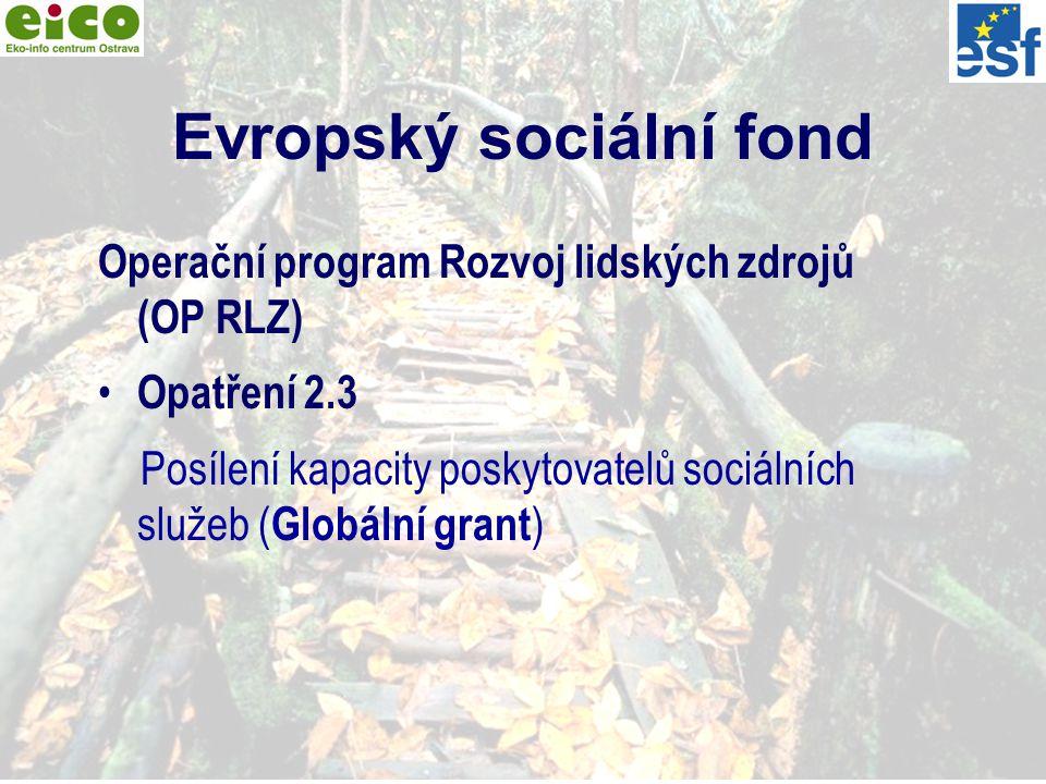 2 Evropský sociální fond Operační program Rozvoj lidských zdrojů (OP RLZ) Opatření 2.3 Posílení kapacity poskytovatelů sociálních služeb ( Globální grant )