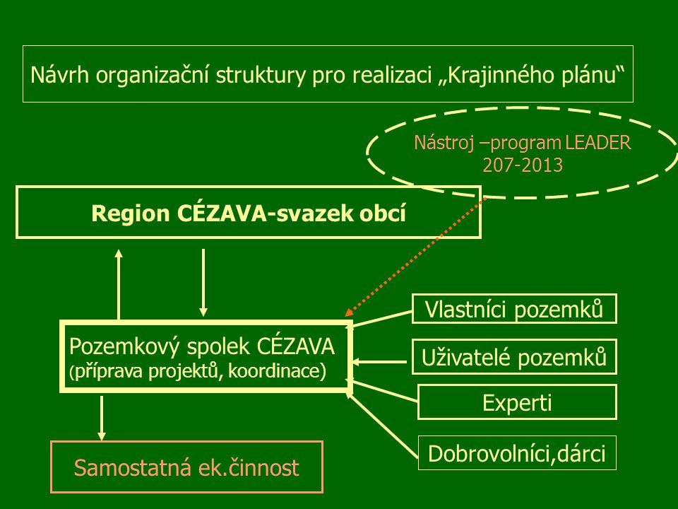 """Návrh organizační struktury pro realizaci """"Krajinného plánu"""" Region CÉZAVA-svazek obcí Pozemkový spolek CÉZAVA ( příprava projektů, koordinace) Vlastn"""