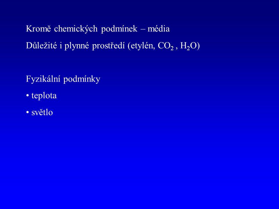 Kromě chemických podmínek – média Důležité i plynné prostředí (etylén, CO 2, H 2 O) Fyzikální podmínky teplota světlo