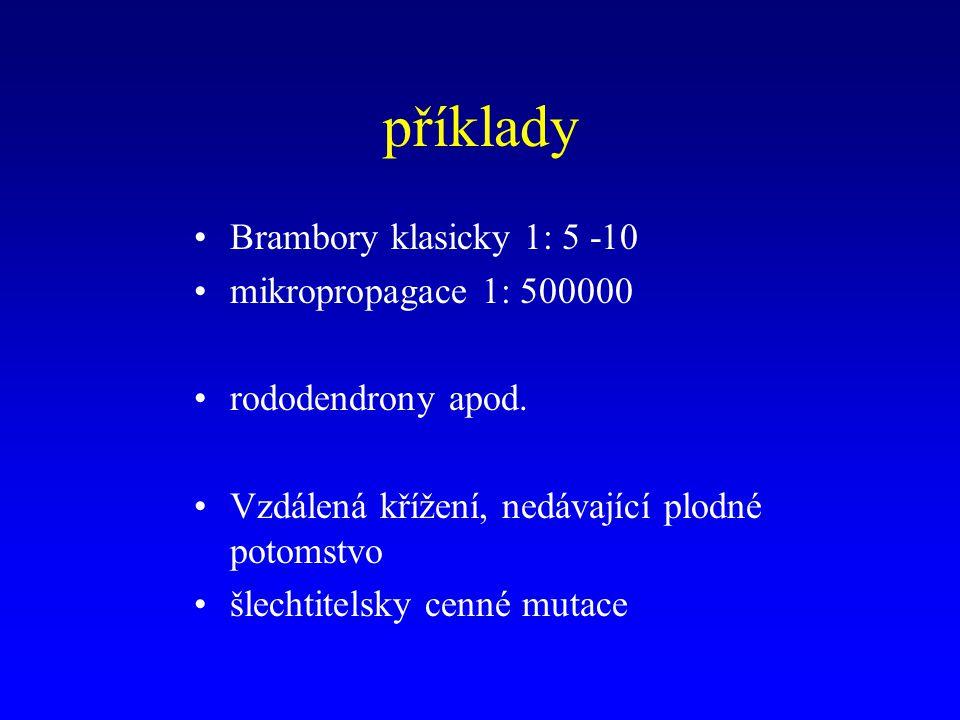 příklady Brambory klasicky 1: 5 -10 mikropropagace 1: 500000 rododendrony apod.