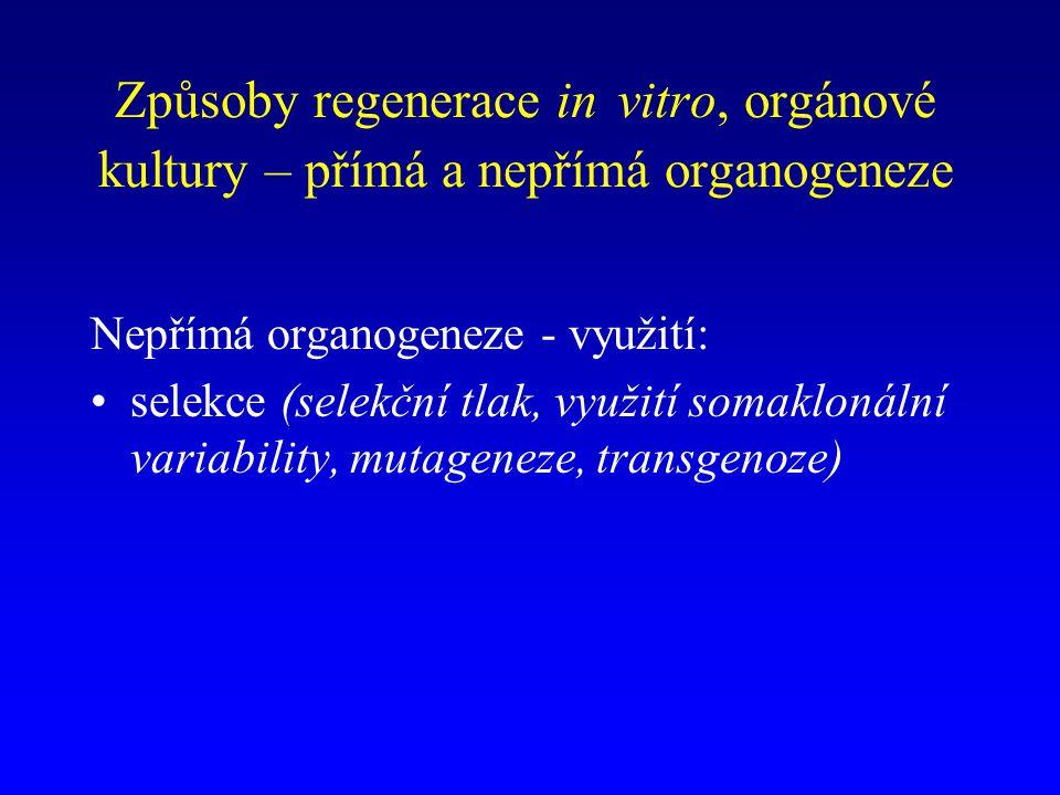 Způsoby regenerace in vitro, orgánové kultury – přímá a nepřímá organogeneze Nepřímá organogeneze - využití: selekce (selekční tlak, využití somaklonální variability, mutageneze, transgenoze)