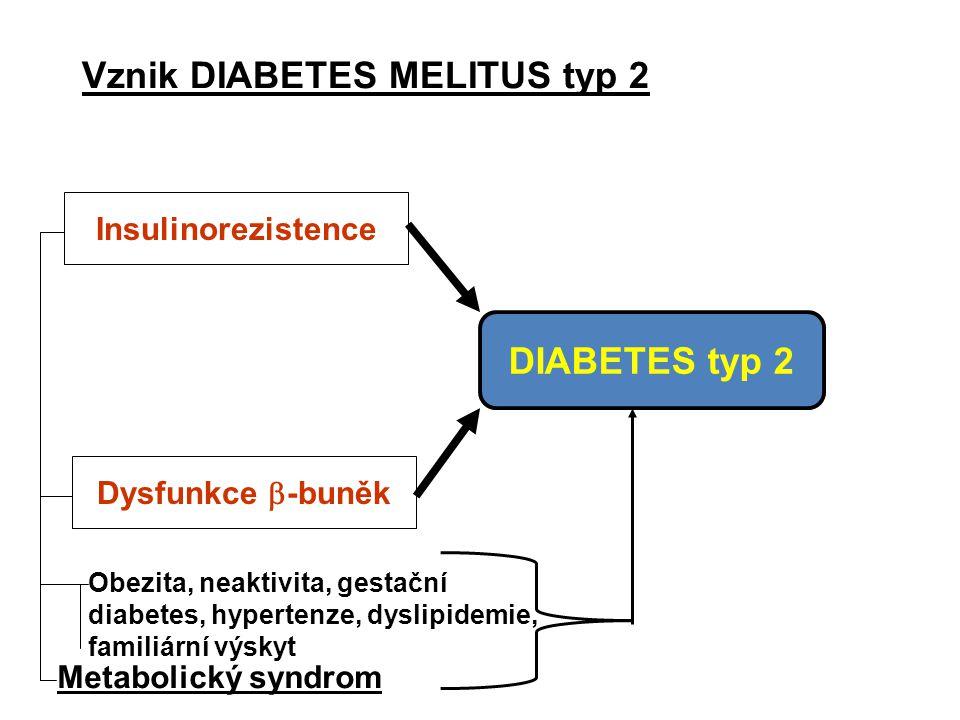 Vznik DIABETES MELITUS typ 2 Insulinorezistence Dysfunkce  -buněk Obezita, neaktivita, gestační diabetes, hypertenze, dyslipidemie, familiární výskyt DIABETES typ 2 Metabolický syndrom