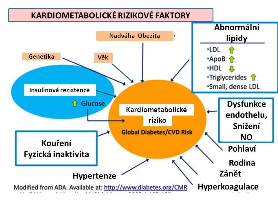KARDIOMETABOLICKÉ RIZIKOVÉ FAKTORY Nadváha Obezita Genetika Věk Kardiometabolické riziko Insulinová rezistence Kouření Fyzická inaktivita Hypertenze Pohlaví Rodina Zánět Hyperkoagulace Abnormální lipidy Dysfunkce endothelu, Snížení NO
