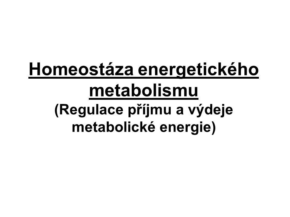 Homeostáza energetického metabolismu (Regulace příjmu a výdeje metabolické energie)