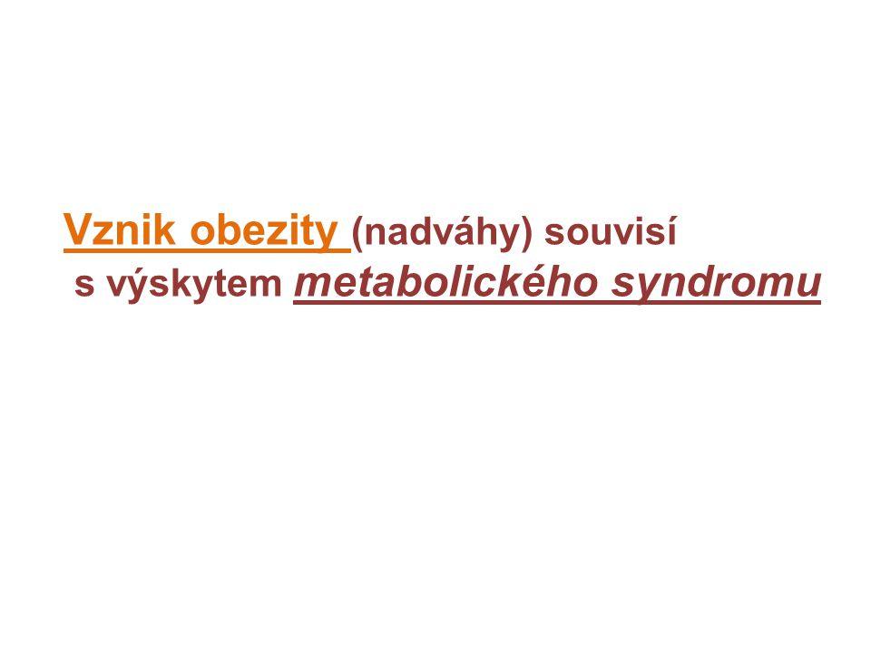 Vznik obezity (nadváhy) souvisí s výskytem metabolického syndromu