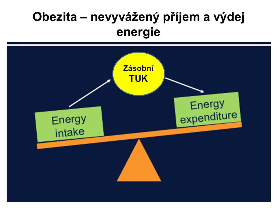 Chronický nadbytek metabolické energie Insulinorezistence (omezuje vstup glukosy do buňky, která je nasycena) Hyperglykemie (glukotoxicita) Nadbytečné ukládání tuku (abdominální obezita) Zvýšení cirkulujících mastných kyselin (lipotoxicita) OXIDAČNÍ STRES