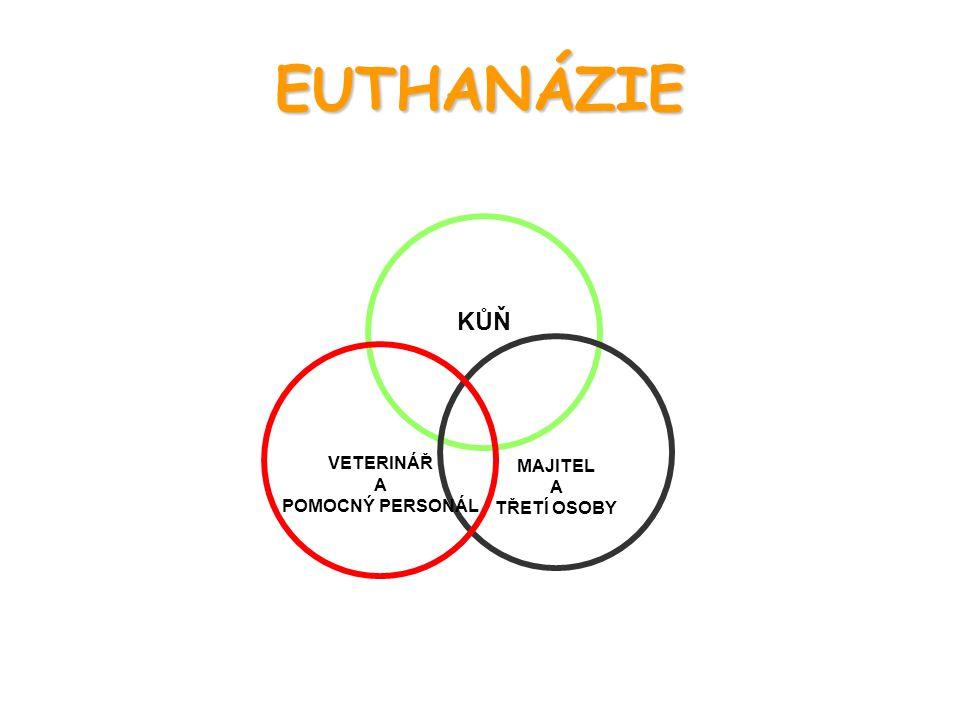 EUTHANÁZIE KŮŇ MAJITEL A TŘETÍ OSOBY VETERINÁŘ A POMOCNÝ PERSONÁL