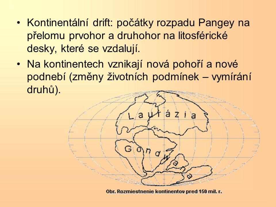 Kontinentální drift: počátky rozpadu Pangey na přelomu prvohor a druhohor na litosférické desky, které se vzdalují. Na kontinentech vznikají nová poho