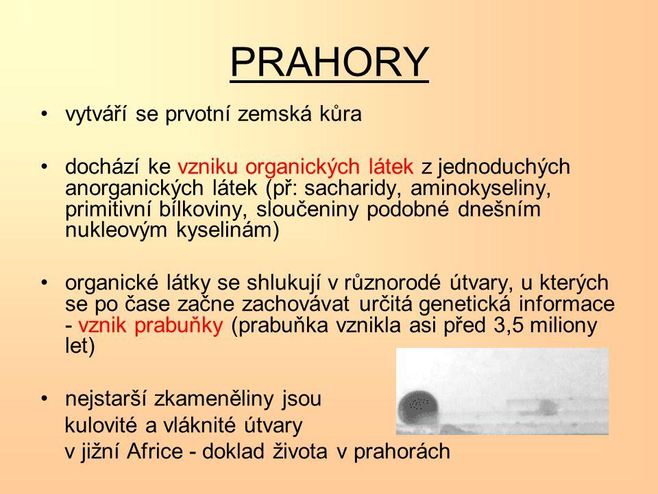 PRAHORY vytváří se prvotní zemská kůra dochází ke vzniku organických látek z jednoduchých anorganických látek (př: sacharidy, aminokyseliny, primitivn