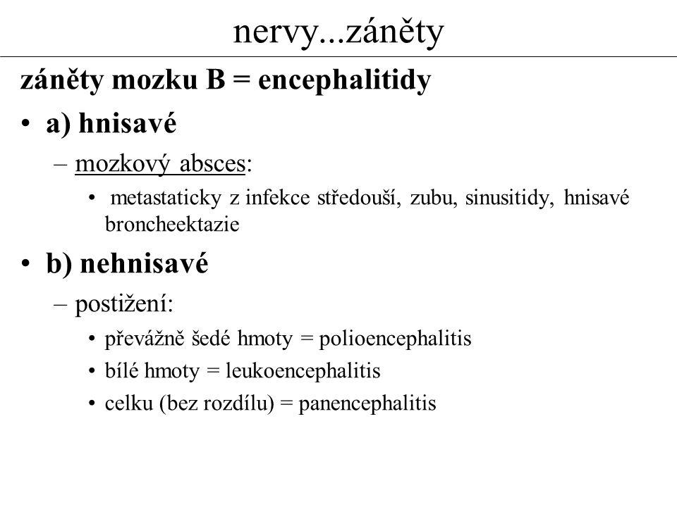 nervy...záněty záněty mozku B = encephalitidy a) hnisavé –mozkový absces: metastaticky z infekce středouší, zubu, sinusitidy, hnisavé broncheektazie b