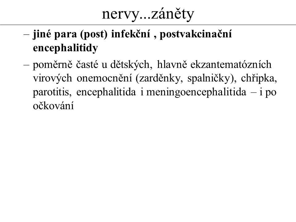 nervy...záněty –jiné para (post) infekční, postvakcinační encephalitidy –poměrně časté u dětských, hlavně ekzantematózních virových onemocnění (zarděn