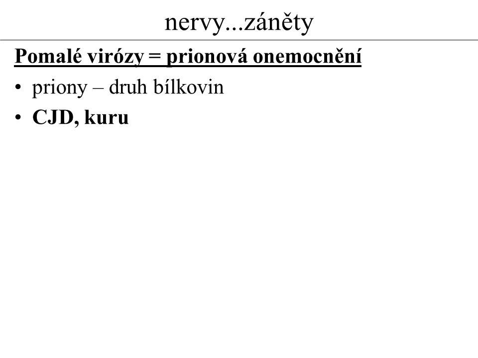 nervy...záněty Pomalé virózy = prionová onemocnění priony – druh bílkovin CJD, kuru