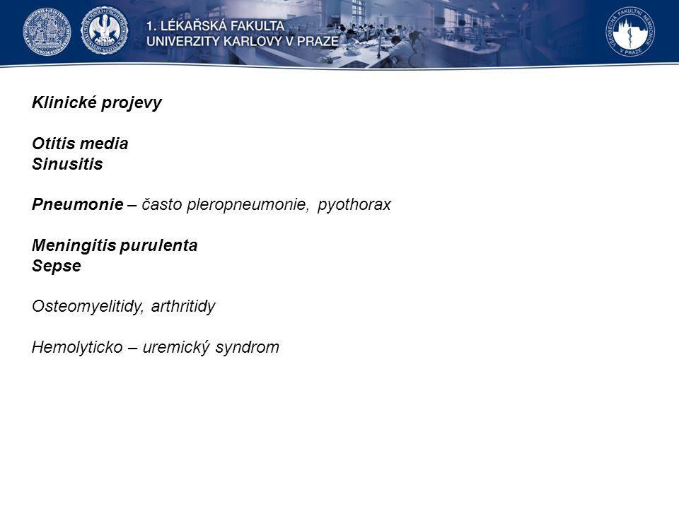 Klinické projevy Otitis media Sinusitis Pneumonie – často pleropneumonie, pyothorax Meningitis purulenta Sepse Osteomyelitidy, arthritidy Hemolyticko – uremický syndrom