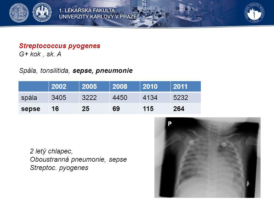 Streptococcus pyogenes G+ kok, sk. A Spála, tonsilitida, sepse, pneumonie 20022005200820102011 spála34053222445041345232 sepse162569115264 2 letý chla