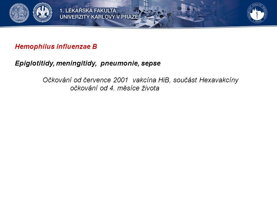Hemophilus influenzae B Epiglotitidy, meningitidy, pneumonie, sepse Očkování od července 2001 vakcína HiB, součást Hexavakcíny očkování od 4. měsíce ž