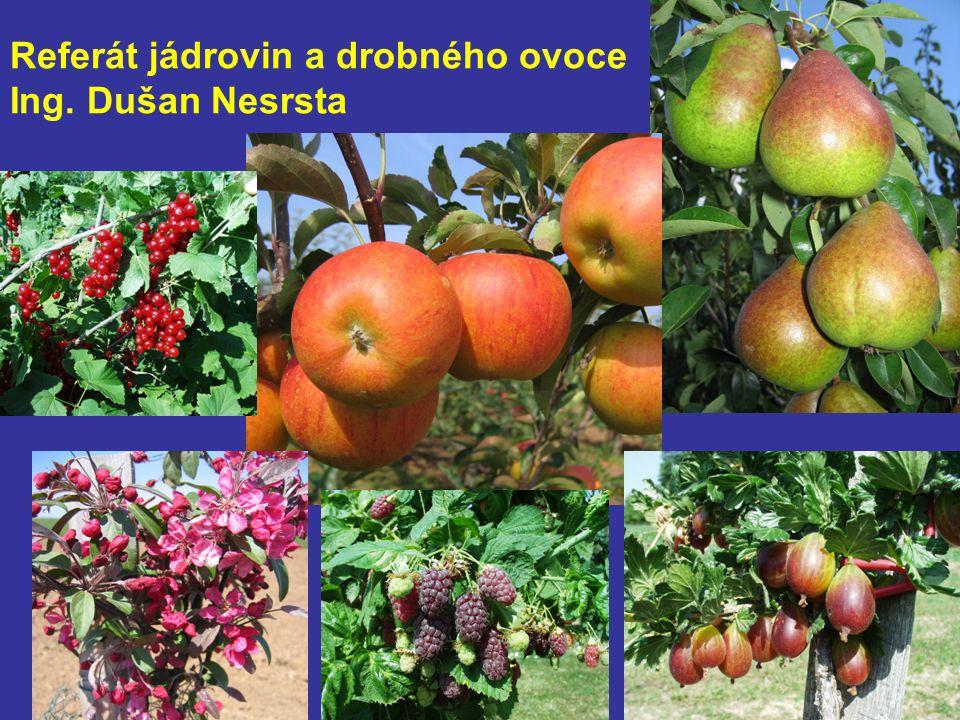 Referát jádrovin a drobného ovoce Ing. Dušan Nesrsta