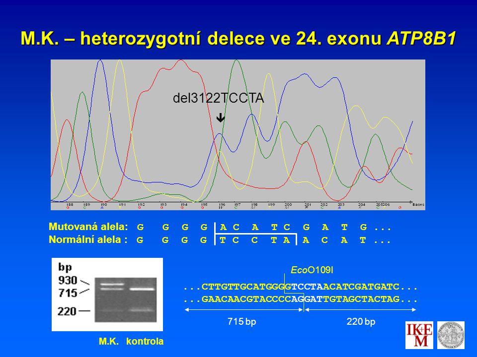 M.K. – heterozygotní delece ve 24. exonu ATP8B1 Mutovaná alela: G G G G A C A T C G A T G...