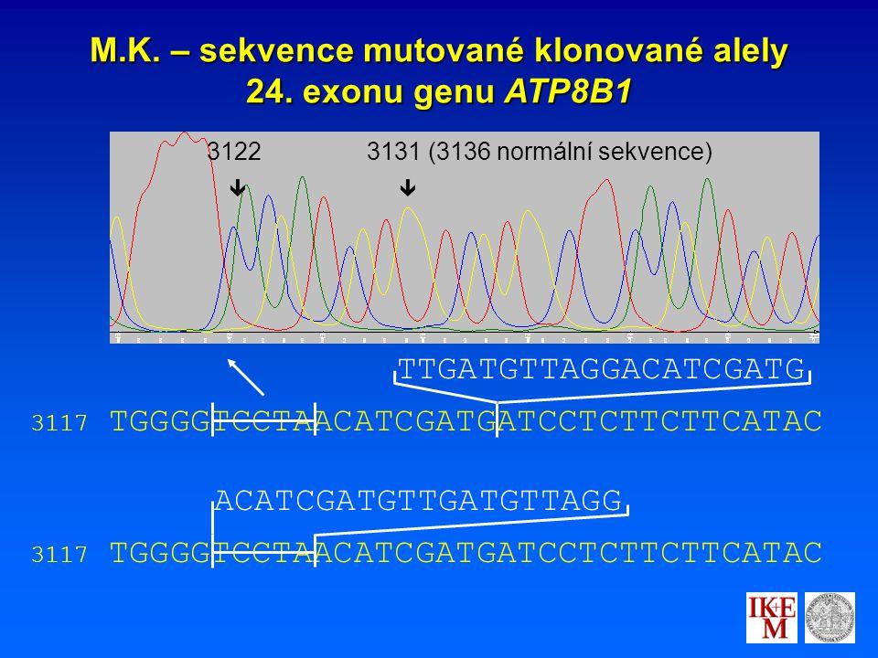 M.K. – sekvence mutované klonované alely 24.