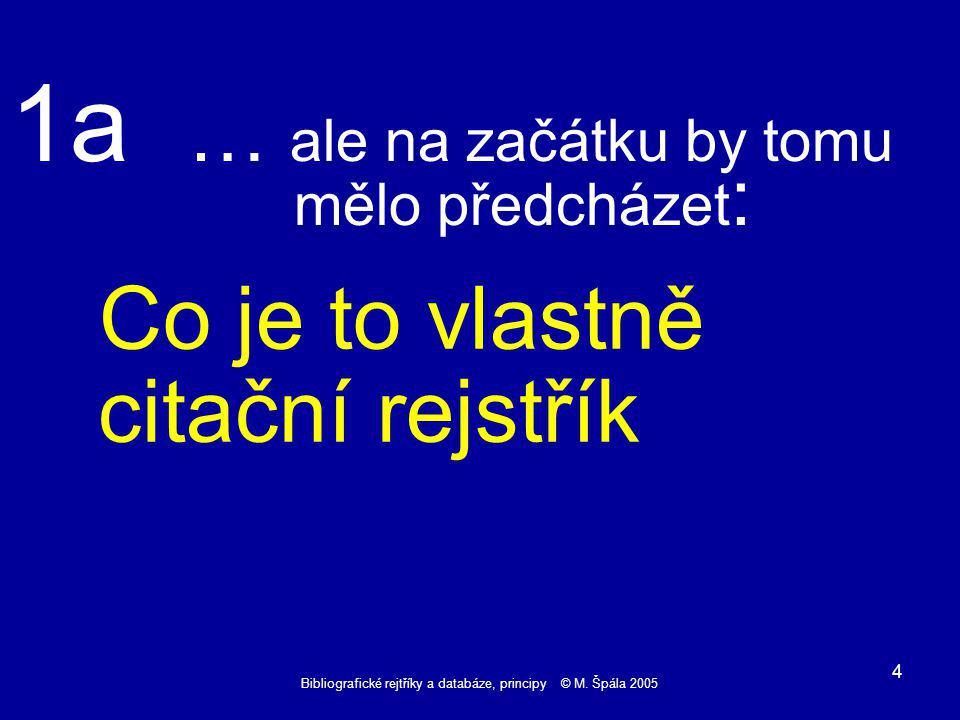 Bibliografické rejtříky a databáze, principy © M.Špála 2005 15 Reference 6 - Černý..........