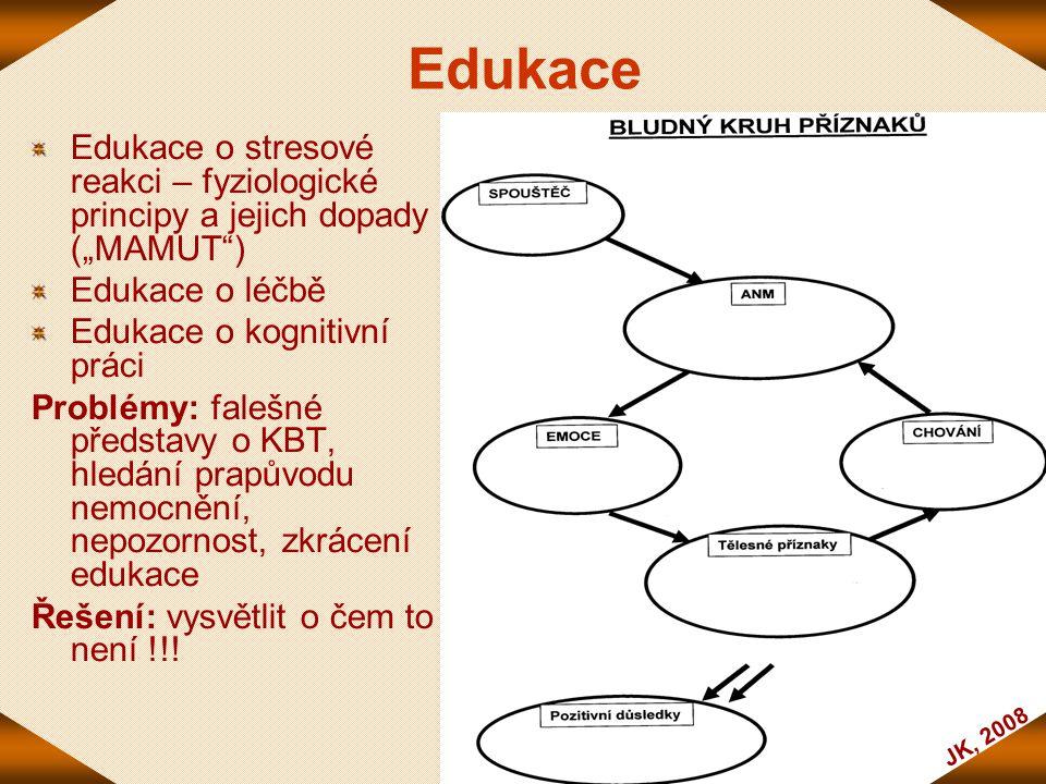 """JK, 2008 Edukace Edukace o stresové reakci – fyziologické principy a jejich dopady (""""MAMUT"""") Edukace o léčbě Edukace o kognitivní práci Problémy: fale"""