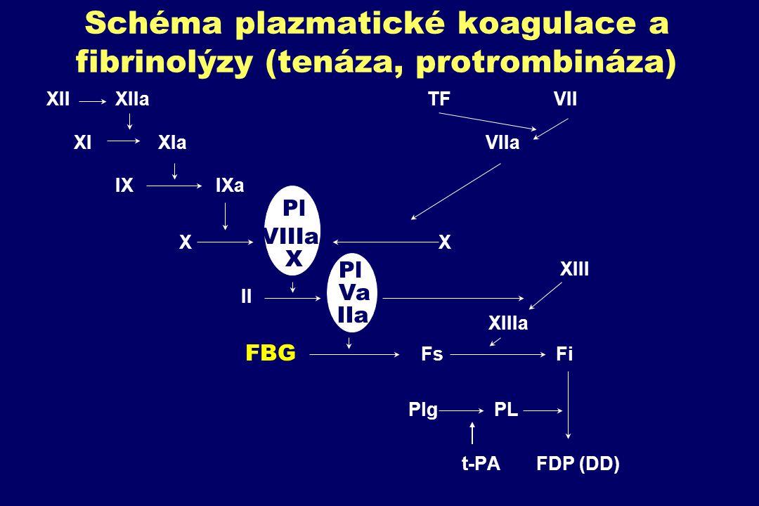 Schéma plazmatické koagulace a fibrinolýzy (tenáza, protrombináza) XII XIIa TF VII XI XIa VIIa IX IXa X X XIII II XIIIa FBG Fs Fi Plg PL t-PA FDP (DD)