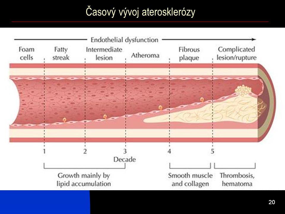 20 Časový vývoj aterosklerózy