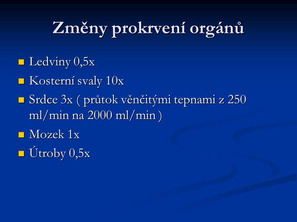 Změny prokrvení orgánů Ledviny 0,5x Ledviny 0,5x Kosterní svaly 10x Kosterní svaly 10x Srdce 3x ( průtok věnčitými tepnami z 250 ml/min na 2000 ml/min